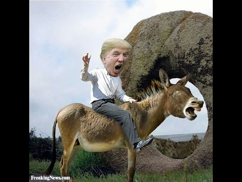 Image result for Trump riding a donkey