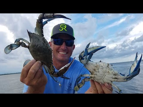 MASSIVE Blue Crab And Stone Crab On HAND LINE!!! {Catching, Cleaning Cooking}