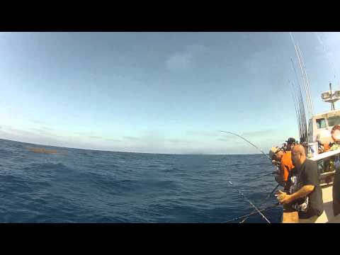 Offshore Tuna Fishing on the Coral Sea September 13-15, 2013