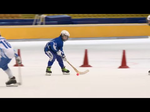 Хоккей с мячом - Быстрее, выше, сильнее! - Серия 32 - Детям о спорте