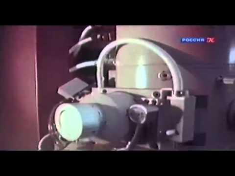 Янтарная кислота - купить, цена, доставка и отзывы