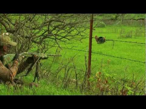Hunting Eastern Turkeys in Oklahoma