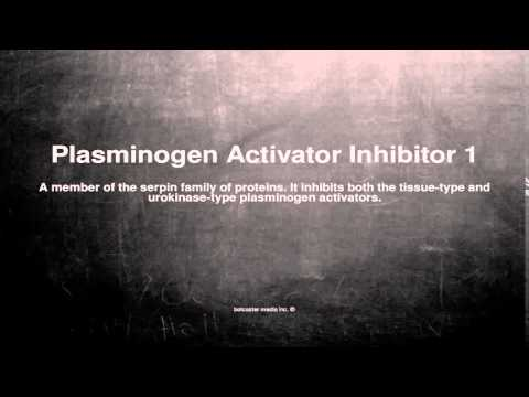Medical vocabulary: What does Plasminogen Activator Inhibitor 1 mean