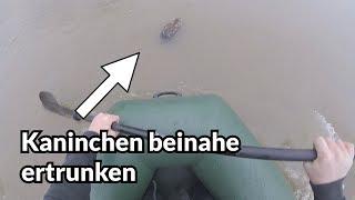 Rettung vor dem Hochwasser - Tiernotruf #133