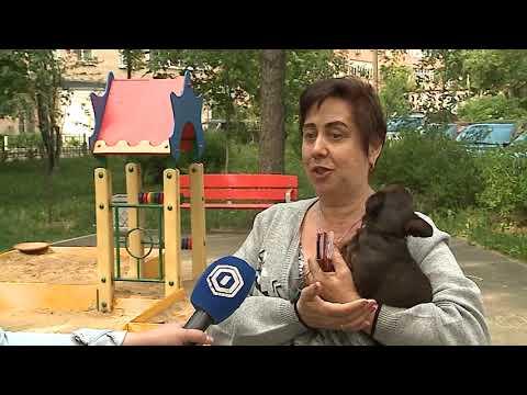 (12+) Детская площадка стала причиной конфликта