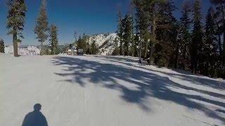 Whistler Alpine Meadows