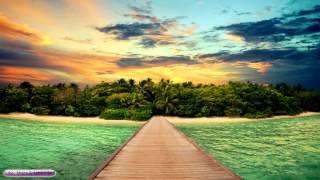 Reggae Asian Fusion Music | Tea Roots | Sleep, Study, Relax, Meditation