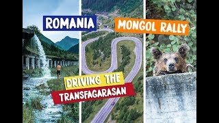 TRANSFAGARASAN - THE WORLD'S GREATEST ROAD AND CAMPING WITH BEARS!