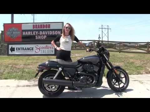 2017 Street Rod For Sale >> 2017~2018 Harley Davidson Street 750 Motorcycles for sale in FL 2020 - YouTube