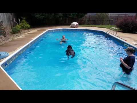Pool story 2