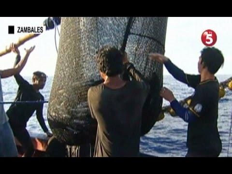 Mga mangingisda sa Masinloc, hinaharang pa rin daw ng Chinese coast guard