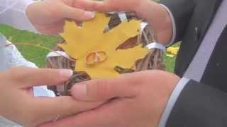 Женя + Алена. Свадьба в октябре