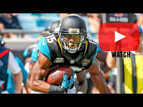 "Allen Robinson || ""Destined"" 