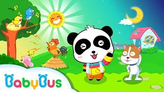 Day & Night | Game Preview | Educational Games for kids | BabyBus