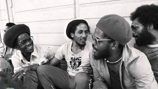 The wailers - Natty dread (Instrumental).