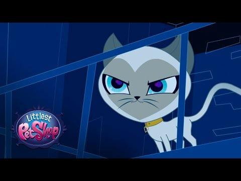 Littlest Pet Shop Season 1 - 'Cat Spy?' Official Clip