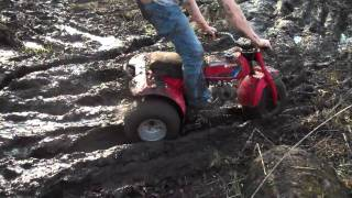 3-wheeler, Dirt Bike, and 4-wheeler mudding