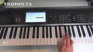 Baixar BAILA CONMIGO- Dayvi (PIANO/TECLADO) TUTORIAL,VICTOR CARDENAS, KELLY RUIZ