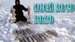 Рыбалка Казахстан заповедник Коргалжин озеро Исей декабрь 2019