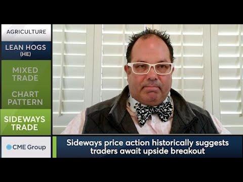 November 24 Livestock Commentary: Scott Shellady