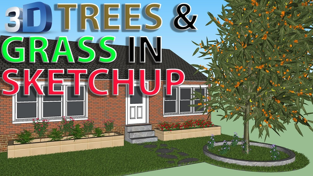 Trees and Grass In SketchUp