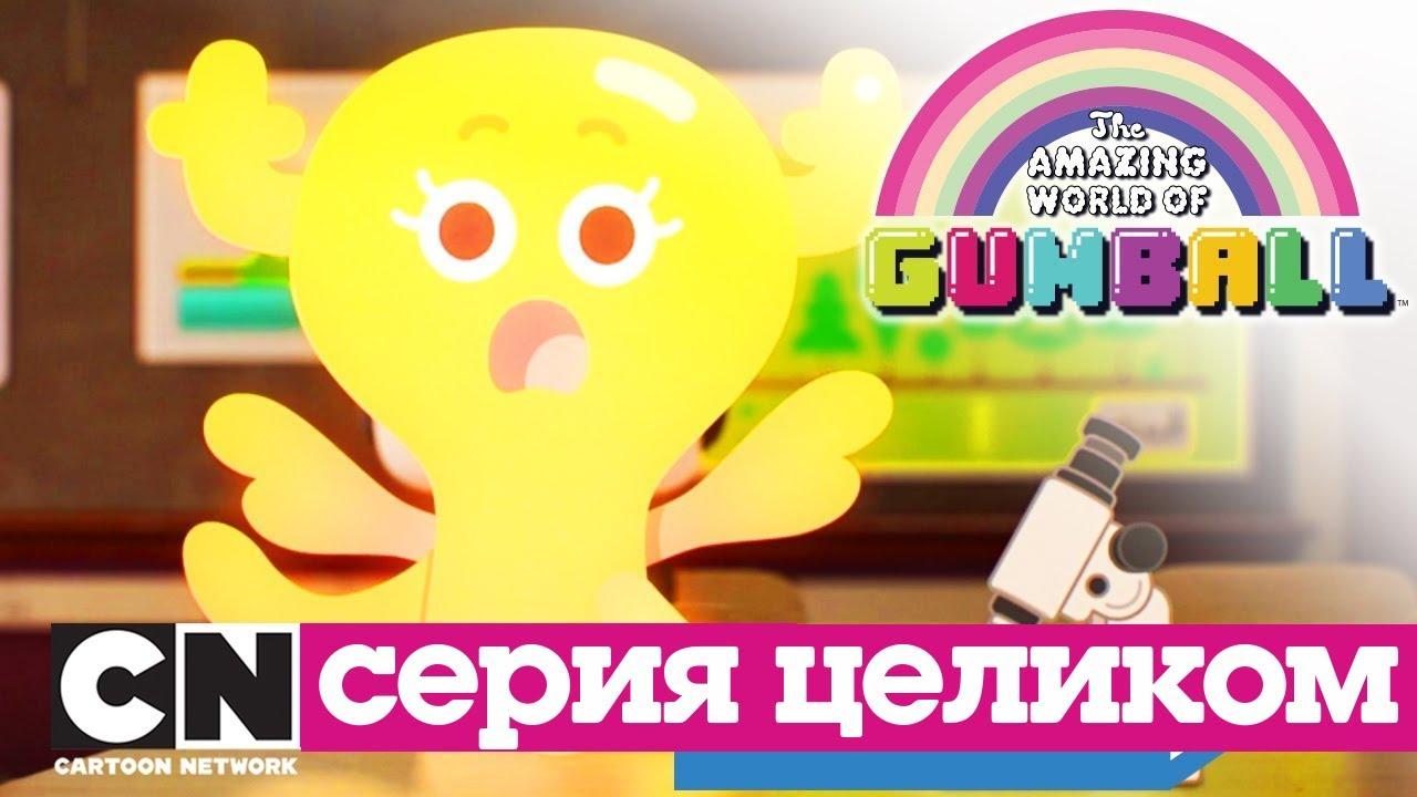 Гамбола | Эффект бабочки + Вопрос (серия целиком) | Cartoon Network MyTub.uz TAS-IX