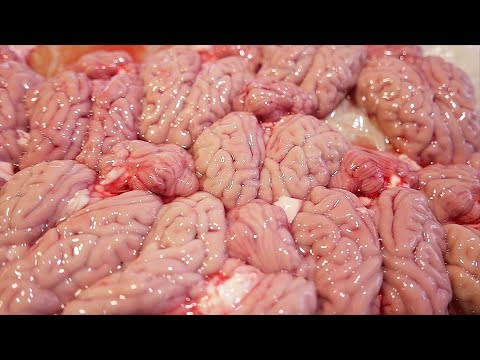 Taiwanese Street Food - PIG BRAIN Bacon Cheese Pork Sausage Taiwan