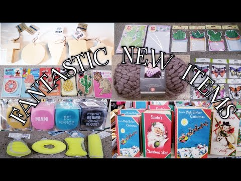 Come With Me To A PHENOMENAL Dollar Tree/ FANTASTIC NEW ITEMS/ Nov 6