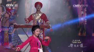 [星光大道] 20161203 《京族舞蹈》 表演:清花 | CCTV