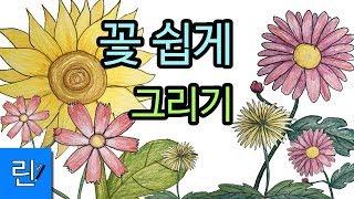 해바라기 국화 민들레 코스모스 꽃 쉽게그림그리기 ㅣ 그…