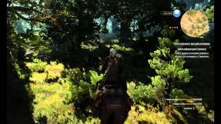 The Witcher 3 упражнение в высшей алхимии    учись гнать сивуху правильно