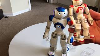 U.A.V Advertising Aldebaran Nao Robot Arrives