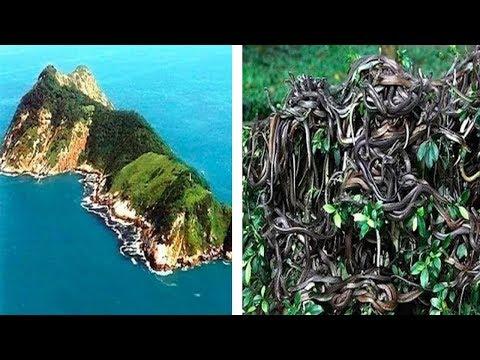 10 Islas A Las Que NUNCA Debes Ir Por Nada Del Mundo