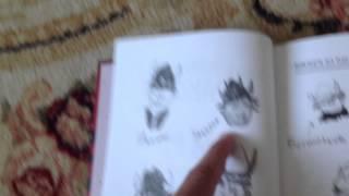 Как приручить дракона книга 1 обзор