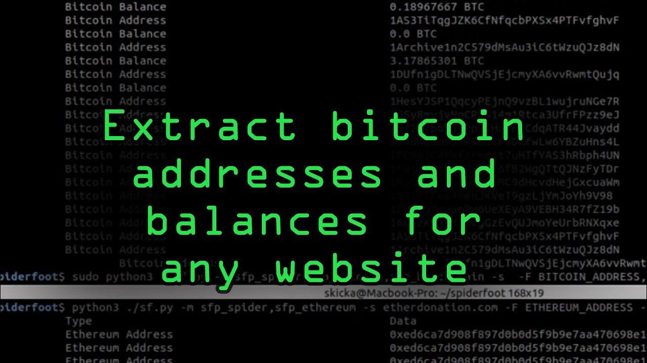 bitcoin kali linux