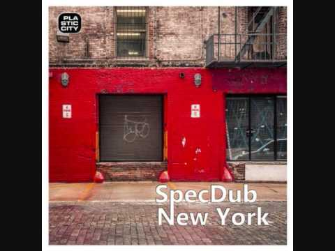 SpecDub - New York (BDTom remix)