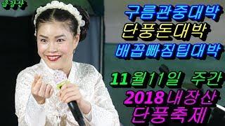 💗버드리 단풍돈대박 맞은날💗11월11일 주간 2018 내장산 단풍축제 초청 공연
