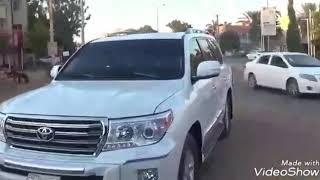 عشرة ونسه - لقاء مع محمد الريان | محمد مصطفى البرنس