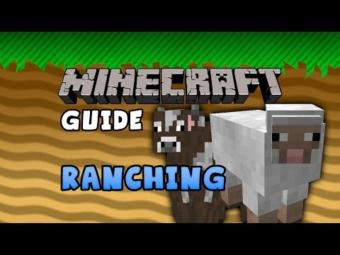 The Minecraft Guide - 05 - Ranching