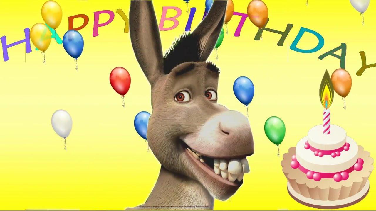 happy birthday donkey Donkey's Happy Birthday Song| funny song for children   YouTube happy birthday donkey