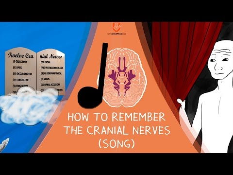 How to Remember The Cranial Nerves (Song) | OSCE PASS |