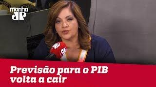 Denise Campos de Toledo: Previsão para o PIB volta a cair e chega a 1,97%