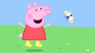 Peppa Pig Français | Animaux | Compilation | Dessin Animé Pour Enfant