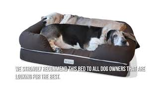 Relief back pain with the best Orthopedic Dog Bed Reviews (The Comfy Way To Reduce Joint Pain)