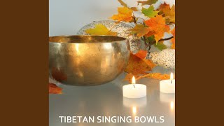 Tibetan Chakra Meditation with Tibetan Singing Bowls and Indian Bamboo Flute Music