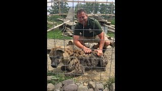 Animal Adventures with Jordan: Spotted Hyena thumbnail