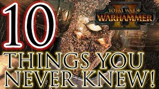 10 Things You Never Knew! - Total War Warhammer 2 Battles!