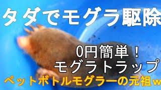 0円簡単!自作モグラトラップ ♡
