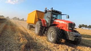 Wielkie żniwa 2014 - Pomorze | Claas New holland Massey ferguson Fiatagri