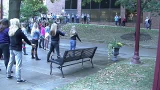 Flash Mob Proposal - Brittany Pavolik and Dan Fleming